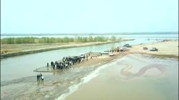 1   黄河滩龙