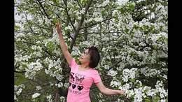 姐妹欢聚梨花园