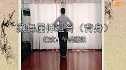 藏舞《正身》