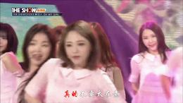 风雨人生 DJ舞曲 赵小飞(DJ沈干程版)