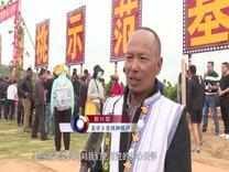 元谋:金沙江畔蜜桃红 助农增收日子甜_云南楚雄网