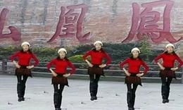 凤凰香香广场舞—动感小子(2群:131793829)