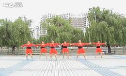 广场舞演教_桑巴 加背面示范
