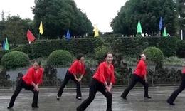江南style   金桥广场舞 《骑马舞》