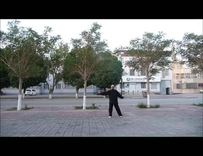 离别草原健身舞(87岁晨练)