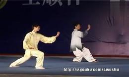 11年锦标赛 男子42式太极拳 09