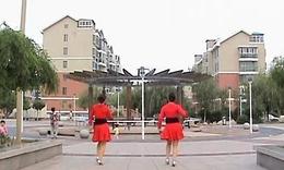 阳光玫瑰广场舞  (桑 巴)正面加背面演示(清晰)