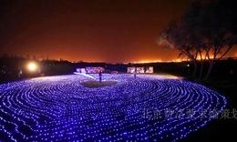 上海求婚策划 灯海求婚方式 创意求婚策划公司