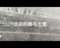 北京记忆(一)元月的鹅毛大雪