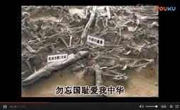 庆祝反法西斯战争胜利70周年_视频在线观看   56