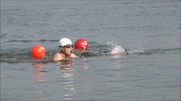 楚园春杯游泳赛   益阳市大码头冬泳协会举办