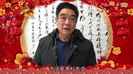 书法家曹科先生喜迎牛年话吉祥送祝福  金安传媒