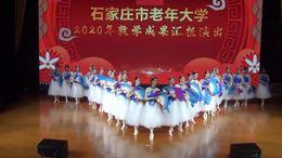 舞蹈表演(我的祖国) 石家庄市老年大学民族舞艺术团 1