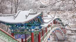 《雪,唯美了冬季》