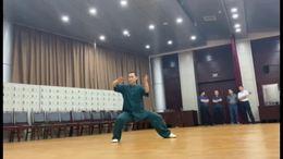 王小坡老师陈氏太极拳表演套路