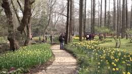 第24届欧洲花卉展随拍