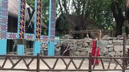 20210327民俗村美猴表演