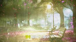 凤飞飞 流水年华  怀旧 歌曲 正大光明高清搞视频