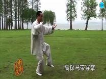 85式太极拳(第三段)
