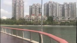 20210328漫步蛇口渔海栈道
