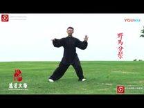 传统杨式太极拳85式。常东峰老师表演_标清