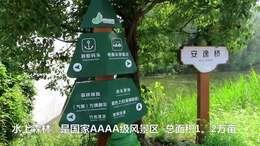 《水上森林觅仙踪》金湖之行(上篇)