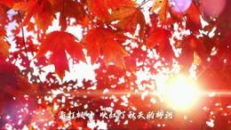 柳河旅游形象歌曲《绿柳环河》MV