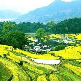 中国美丽乡村展播