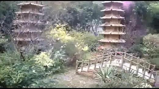 逛上海南翔古猗园18