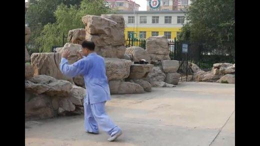 太极中国太极拳108式精彩表演视频0002