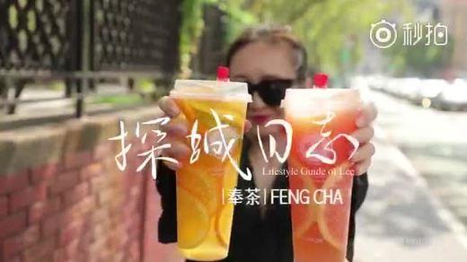 九龙玖奉茶茶恋花探城日志