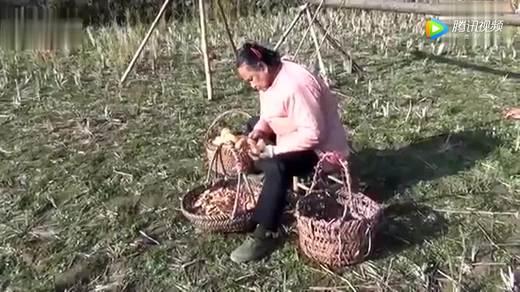 福建连城客家硒都农家自制富硒红薯干