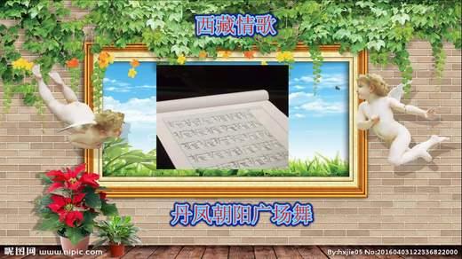 丹凤朝阳广场舞:西藏情歌:応子