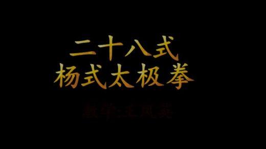 爱剪辑 王凤英28式太极拳教学