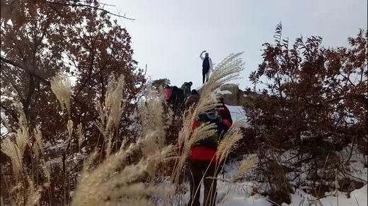 野外养生健身群MV雪山阿佳