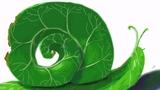 【蔡叔叔讲画】33.创意绘画之树叶蜗牛