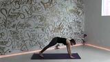 美女教你练瑜伽273