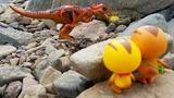 萌鸡小队大宇麦琪石堆里发现恐龙蛋
