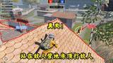 和平精英:国服团队竞技模式也能突破围栏!给敌人来个前后夹击!