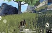 网易荒野行动:小兄弟,你蹲草丛我一样看得到你