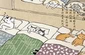 猫主子的睡觉时间