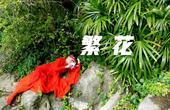 红衣飘逸柔媚国风