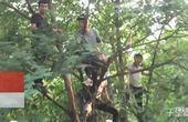【郑州】尬舞名人回乡斗舞  粉丝爬树上围观