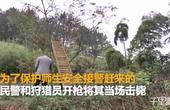 【安徽】监拍一野猪突然闯入校园 被民警当场击毙