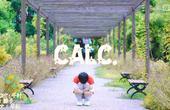 ☆Calc.【爱的颂歌】