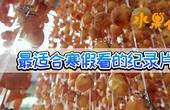 【理娱打挺疼】294 继《舌尖上的中国》后又一神作《水果传》来了!