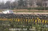 【郑州】数百辆共享单车被街道政府扣压 官方称其收取押金未备案