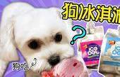 小狗可以吃的冰淇淋?!