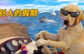 狗子告诉你别人的假期啥样
