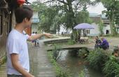 福建数千条鲤鱼排长队